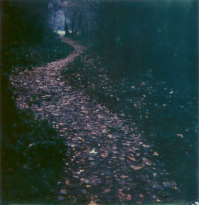 polaroid photograph of a pathway through the gunnersbury triangle, london, uk. taken on 12 december 2012 at 12.12pm. copyright leonie wise