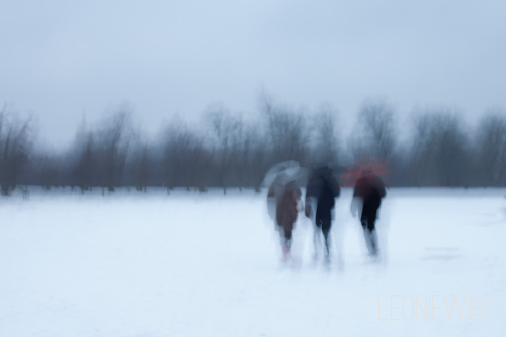 people with umbrellas walking through the snow in hyde park, london. copyright leonie wise