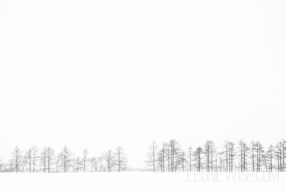shadows-and-horizons-104