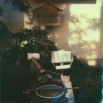 polaroid photograph of eggs in a basket. copyright leonie wise. all rights reserved
