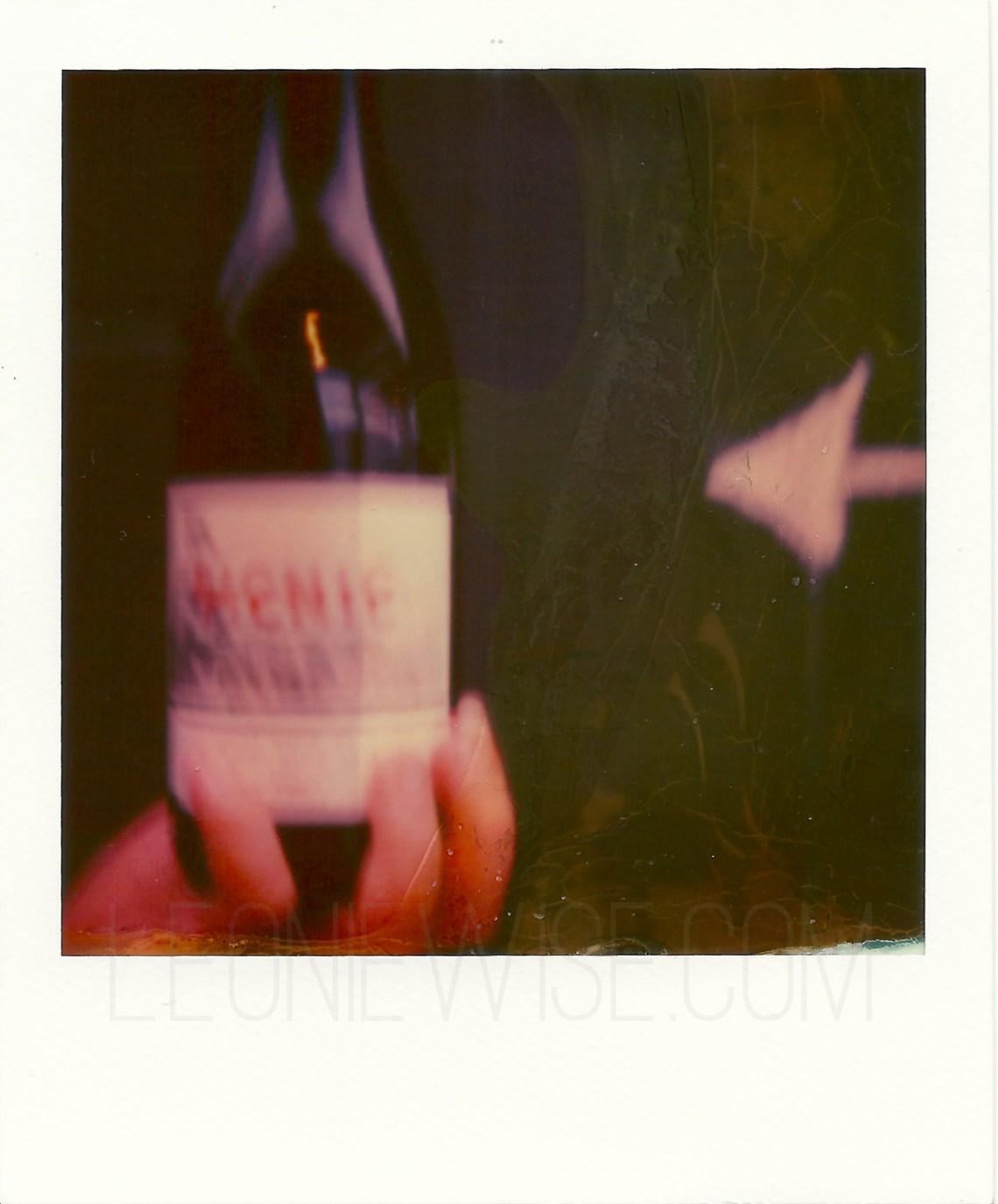 TwoPaddocksPinotNoir_Polaroid-SX70_Impossible-PX70_leoniewise-1