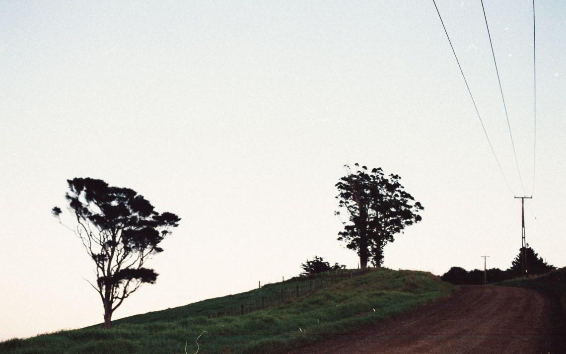 leonie-wise-woodside-bay