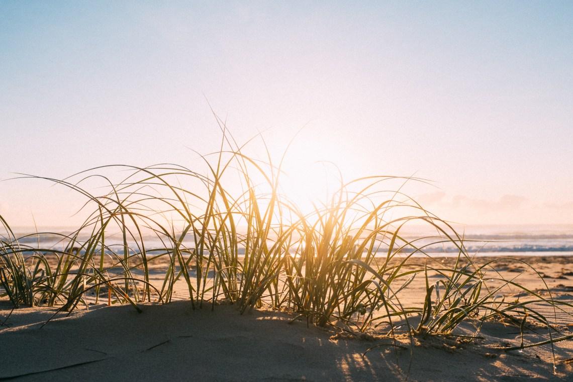 Morning Light, Brunswick Heads Beach, NSW, Australia. By Leonie Wise