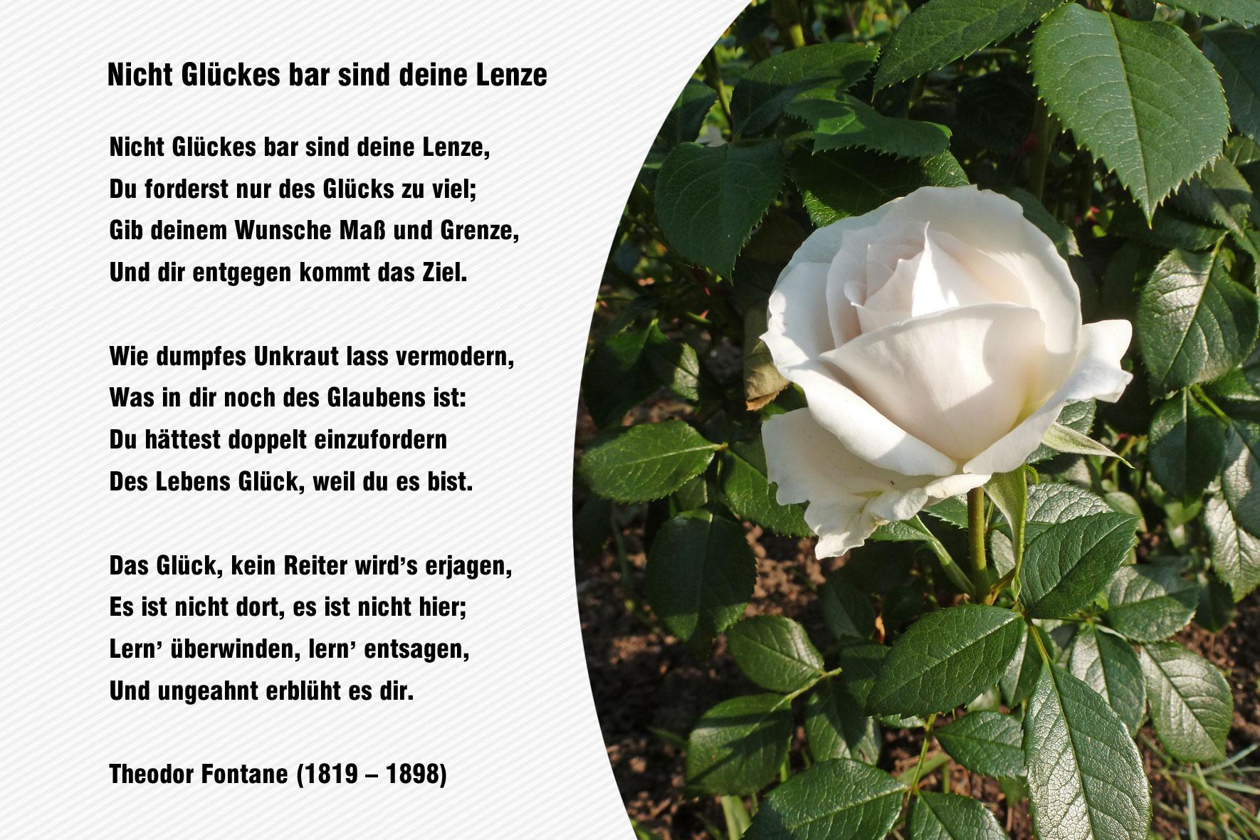 Theodor Fontane  Gedichte
