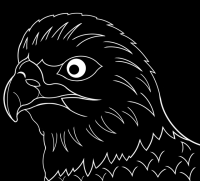 √ Ausmalbilder Adler Bild Malvorlage Malvorlagen Vgel