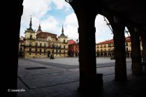 León urbano