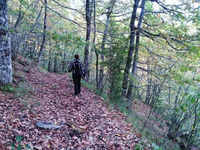 mujer de espaldas caminando por un bosque
