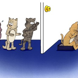 Illustration for Tidy Cats brand cat litter (school project)