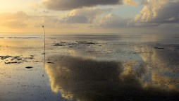 Idian Ocean, Bwejuu