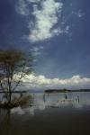 Lake Nayvasha