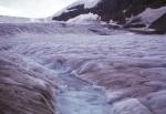 Columbia Ice Field