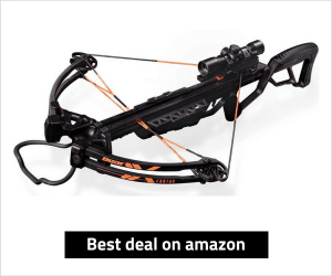 Bear Archery Fortus Crossbow review