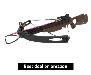 Spider 150 Compound Crossbow Review