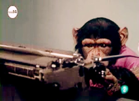 chimp escribiendo