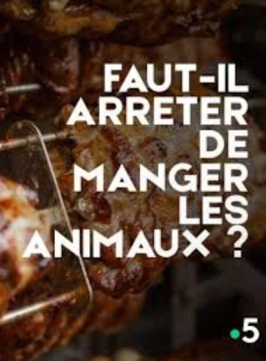 Faut Il Arreter De Manger Des Animaux : arreter, manger, animaux, Faut-il, Arrêter, Manger, Animaux, Palace