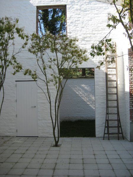 Le Pamphlet  Jardin VDSVD