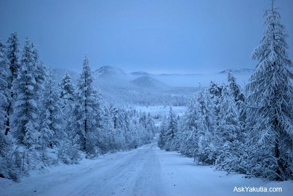 Siberia  leparoledellamiavita