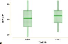 Diagramme en boîtes parallèles