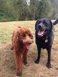 Malia & Lilly