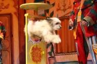circus recre magic 2 (2)