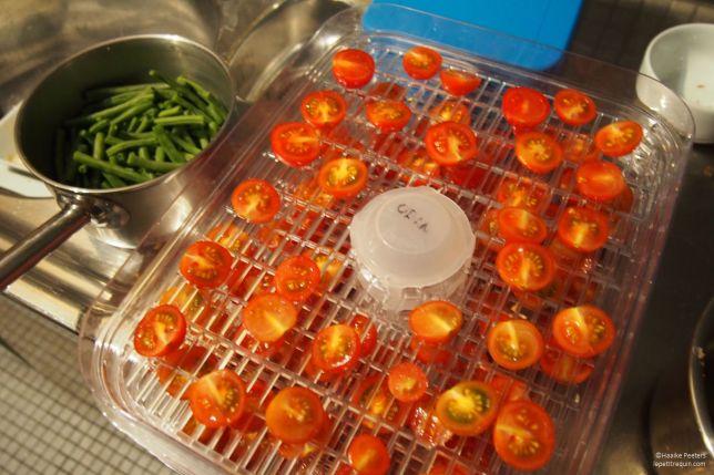Gedroogde tomaten (Le petit requin)