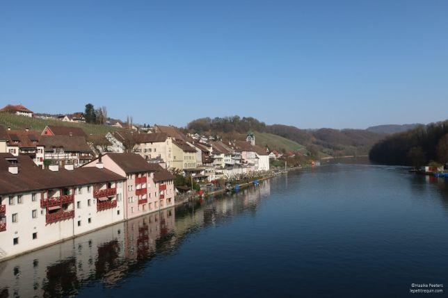 Rheinau (Le petit requin)