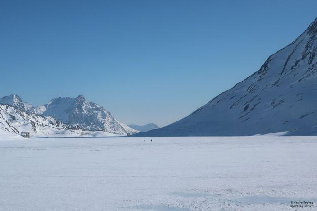 Lago bianco (Le petit requin)