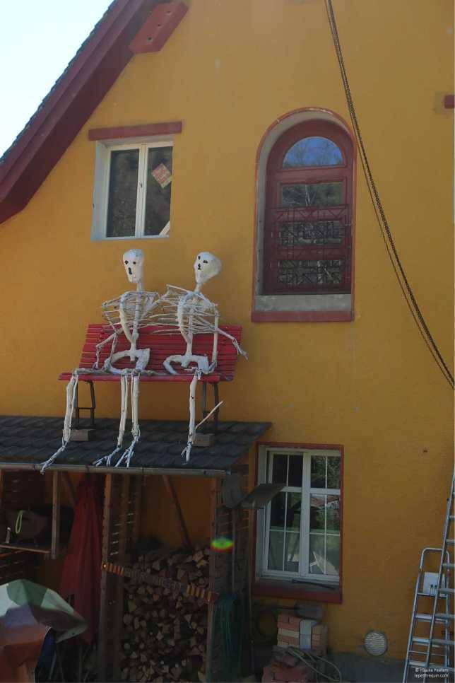 Skeletjes (Le petit requin)