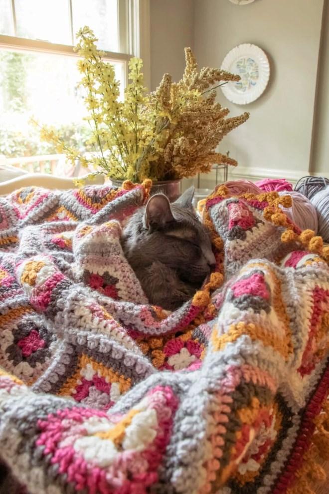 Little grey kitten snuggled under a granny square blanket.