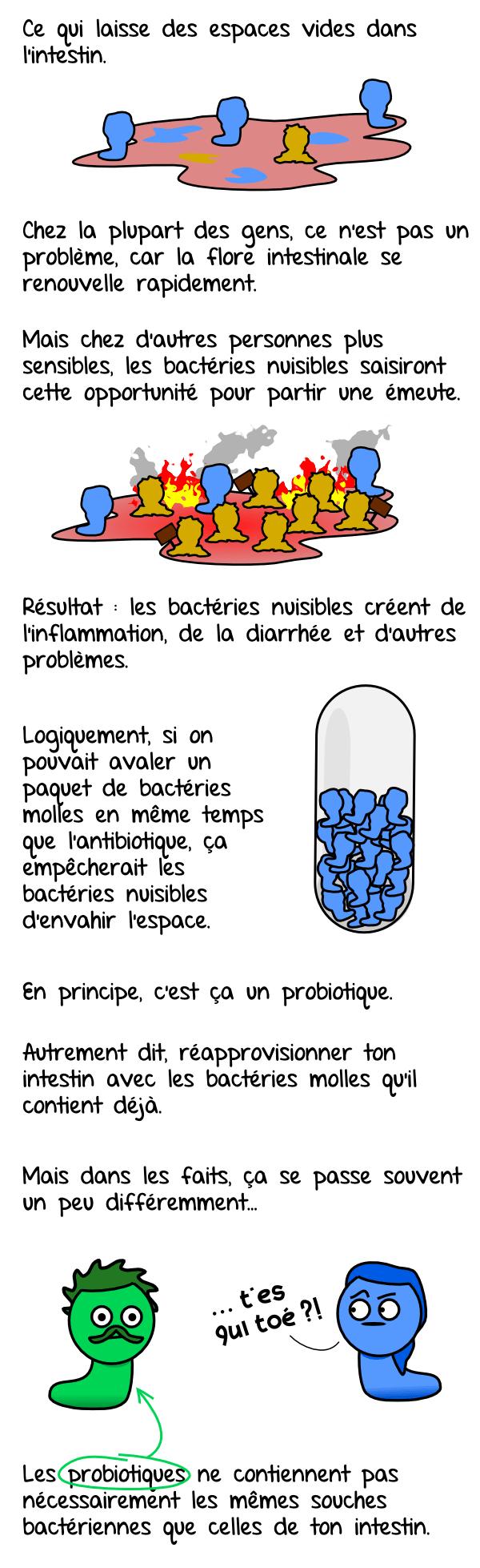 probiotiques02