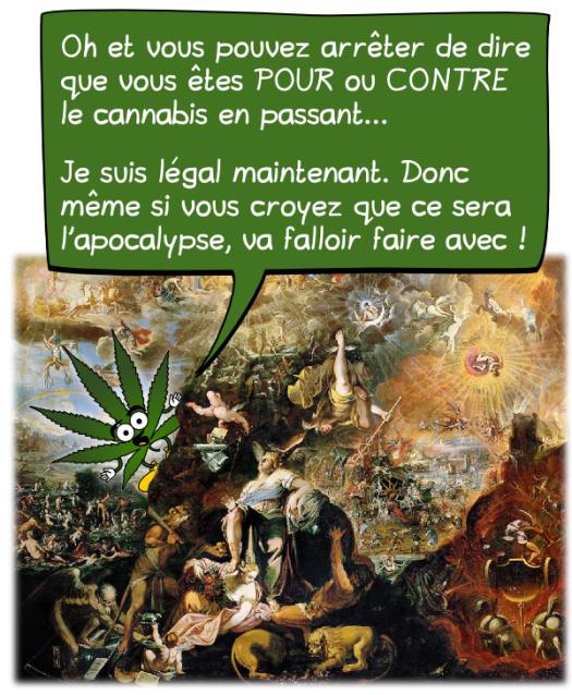 cannabis-conclu-02
