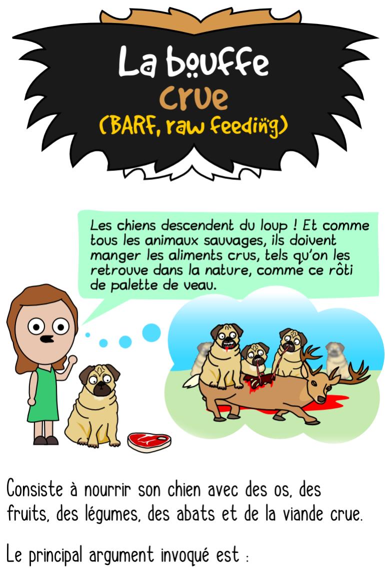 Alimentation crue pour chiens