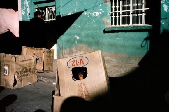 un enfant se cache dans un carton