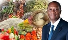 Survie de la Côte d'Ivoire : Une nécessaire politique agricole s'impose #Pluie