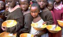 Sécurité alimentaire : le défi majeur d'aujourd'hui et de demain #Systèmesalimentaires