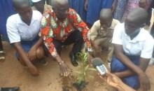 Côte d'Ivoire/Korhogo : les élèves du collège de proximité de Lataha sensibilisés à la protection de l'environnement #Forêts