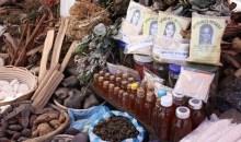 Côte d'Ivoire/16e Journée Africaine de la médecine traditionnelle : Retour sur les acquis depuis son intégration dans le système sanitaire