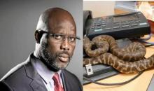 [Liberia Le président déserte son lieu de travail]  Des serpents retrouvés dans son bureau