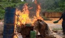 [Côte d'Ivoire/Lutte contre l'orpaillage clandestin] Plusieurs sites détruits dans le nord et le centre du pays