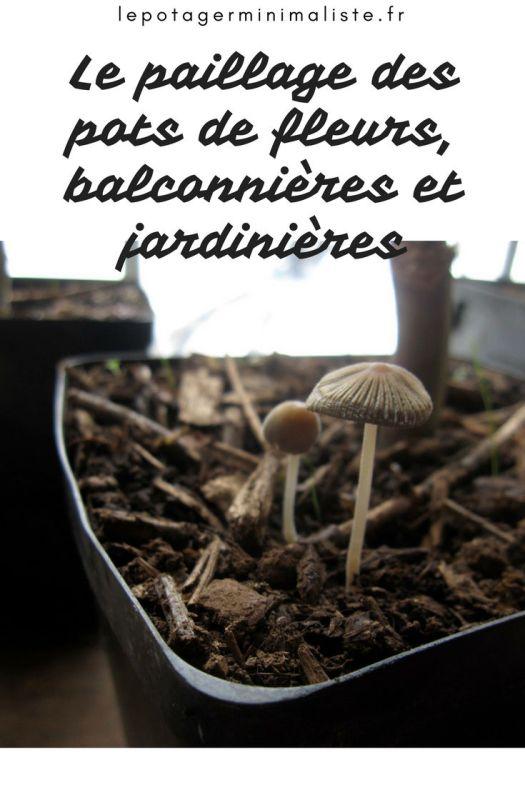 Paillage-couverture-vegetale-mulch-balcon-terrasse-pinterest