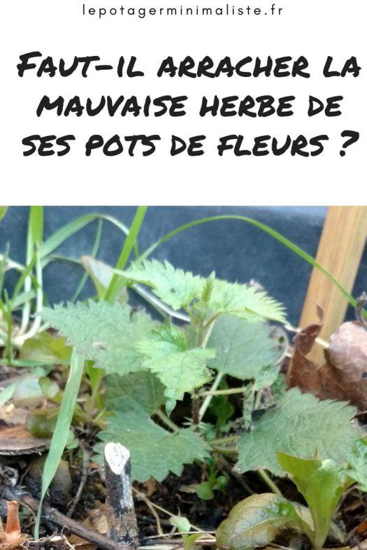 arracher-mauvaise-herbe-pots-fleurs-pinterest