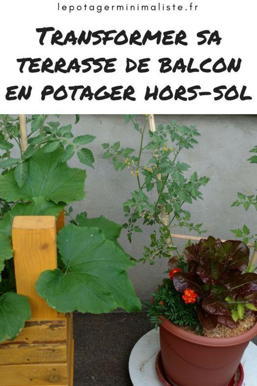 pot-fleurs-comestible-laitue-tomate-oeillet-courgette-pinterest