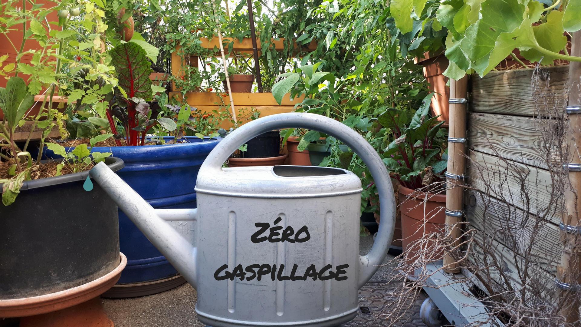 zero-gaspillage-arrosage-permaculture-urbaine