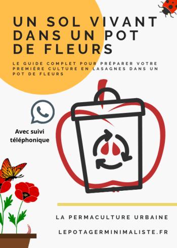 so-vivant-pot-fleurs-consulting