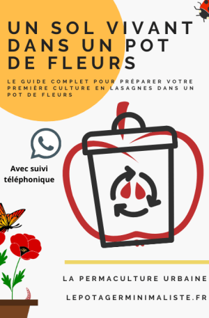 so-vivant-pot-fleurs-consulting