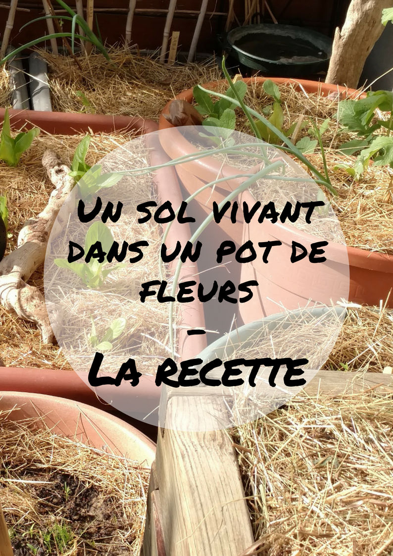 sol-vivant-pot-fleur-tel-lepotagerminimaliste