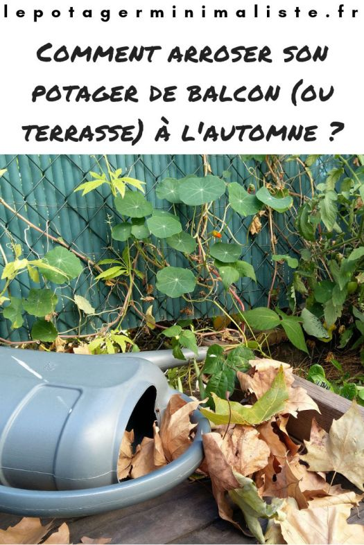 arrosoir-pot-fleurs-automne-potager-terrasse-pinterest