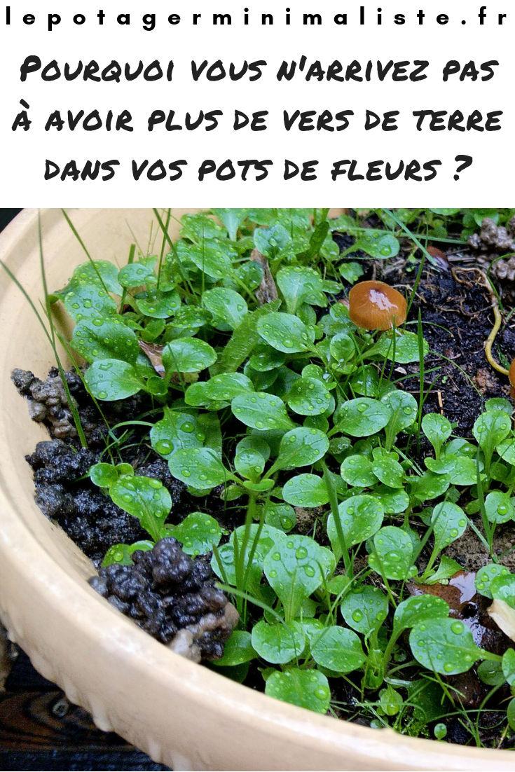vers-terre-pots-fleurs-sol-vivant-pinterest