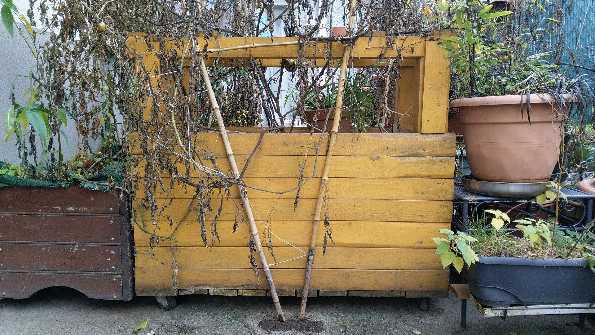 Fabriquer une jardini re ou un bac en bois pour son potager de terrasse les grands principes for Jardiniere en bois pour potager