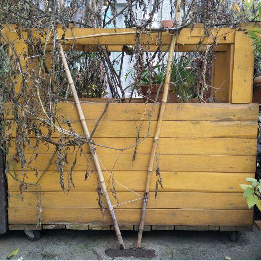 jardiniere-bois-palette-potager-minimaliste